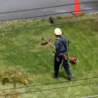 団地の草刈り