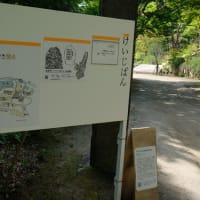 進藤冬華作品と紅桜公園のこと■BENIZAKURA PARK ART ANNUAL 2020 (8月22日~9月30日、札幌)