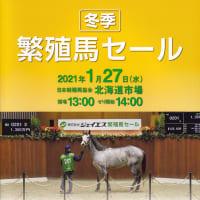 【ジェイエス・冬季繁殖馬セール2021(JS Company Winter Broodmare Sale)】が開催(結果概要等)