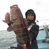 2月29日の釣果と出船予定