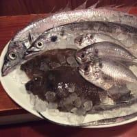 本日のお魚〜!