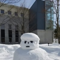 snowman  Trump