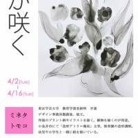 花が咲く ミネタトモコ 4/2-4/16