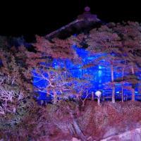 松島 五大堂のライトアップ