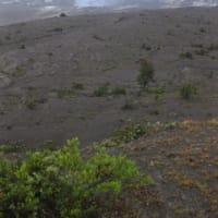 ハワイ火山国立公園(1)