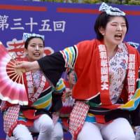 ▼青葉まつり2019(15)聖和短大すずめ隊