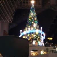 JR京都駅 クリスマスツリー 2012