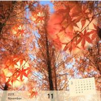 11月のMyカレンダー