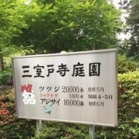 2019 6 22 岩波邦江(vo) 矢野嘉子(p) at 京都さうりる