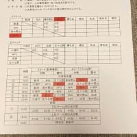 新津スプリングサッカーフェスティバル