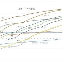 コロナ死者数の推移を示す恐怖のグラフ