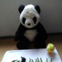 どうぶつ・ティータイム(264)『採れたてはまずパンダに』