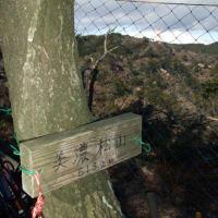 2020/01/13>トレッキング5回目 石津・美濃松山・多度山 3