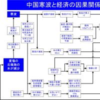 中国寒波と経済の因果関係図