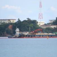 琉球セメント新桟橋で、陸と海から土砂積み込みに抗議