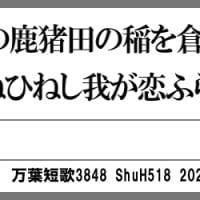 万葉短歌3848 荒城田の3583