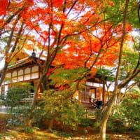 秋の京都 奥嵯峨を歩いてみませんか? 宝筐院