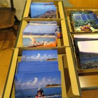 国賠訴訟控訴審の陳述書と海上行動写真展の準備