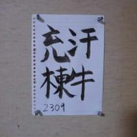 汗牛充棟(かんぎゅうじゅうとう)