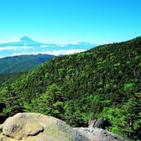 👼🐉奥秩父《国師岳》より望む【富士山】雄姿❢❢