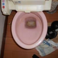 トイレの詰まり修理・・・千葉市営住宅