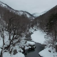 会津高原高畑スキー場、2021年1月24日(日)
