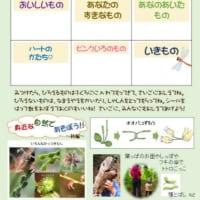 秋の自然公園は、面白い!~9/25(土)オリエンテーリング&焼き芋イベント開催です~