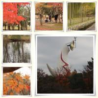 晩秋の万博公園