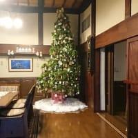 天井まで届くクリスマスツリー