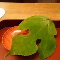 木山、文月1・緑蔭にはヒンヤリとした強さが待つ