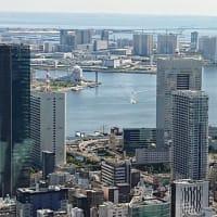 #328 -'20. 東京タワーに居ます。