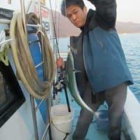 2/20(日)暖かく穏やかな天気も魚活性無く数釣りはダメでしたが何とかサワラにシーバスにサゴシに根魚にと(^◇^ ; ホッ!