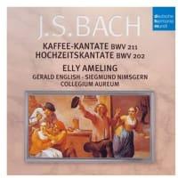タピオカ・カンタータ BWV2019