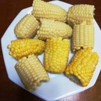 6-1 白いトウモロコシを茹でて食べました