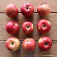 紅玉りんご、間もなく出荷開始