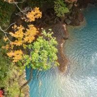 松川渓谷の紅葉~森の大橋からの絶景~岩手県  八幡平市