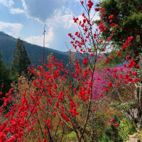 櫃ヶ岳と栃ヶ山