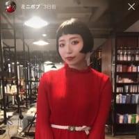 【秋髪】札幌美容室高橋賢吾
