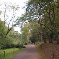 泉自然公園。。。。やっぱり、ゆずちゃんいないと寂しいナ