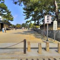 興福寺境内/奈良県奈良市登大路町