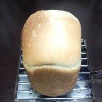 食パン出来た