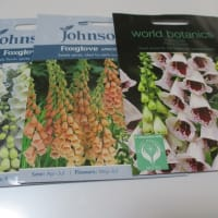 フフ・花種も買いました