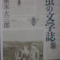 梅雨突入と改植と虫の文学誌