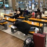 ソウル・大田・扶余・釜山の旅(2019年12月~2020年1月 Day6-3)(27)(終)