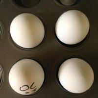 トースター卵 / Ovoj en forneto