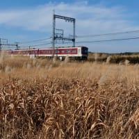 平城宮跡を走る近鉄電車
