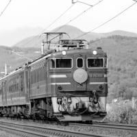 専用機関車の存在感~ED75