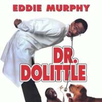 【映画】ドクター・ドリトル(1998年版)…冒険して原作改変したけど中身は冒険心の薄いコメディ