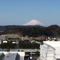 富士山が見えます