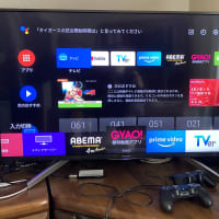SONY製 43インチ液晶TVレビュー(続編)